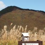 曽爾高原・広大なすすきの大草原・駐車場アクセス情報を実録紹介