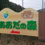 おおだの森を満喫、おおだ山・新峯山・新嶽山、愛知県岡崎市の三山を巡る