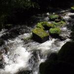 王滝渓谷へ行ってきました・駐車場から見どころまで実録紹介・愛知県豊田市